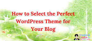 Wordpress-theme-selection